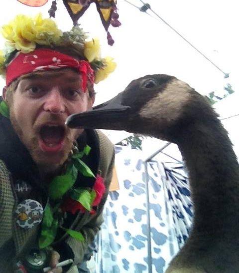 fatherfunk-goose